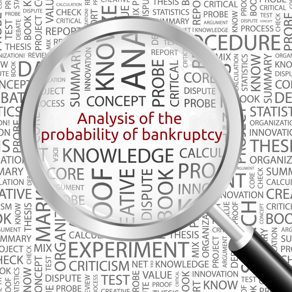 Analysis of the probability of bankruptcy