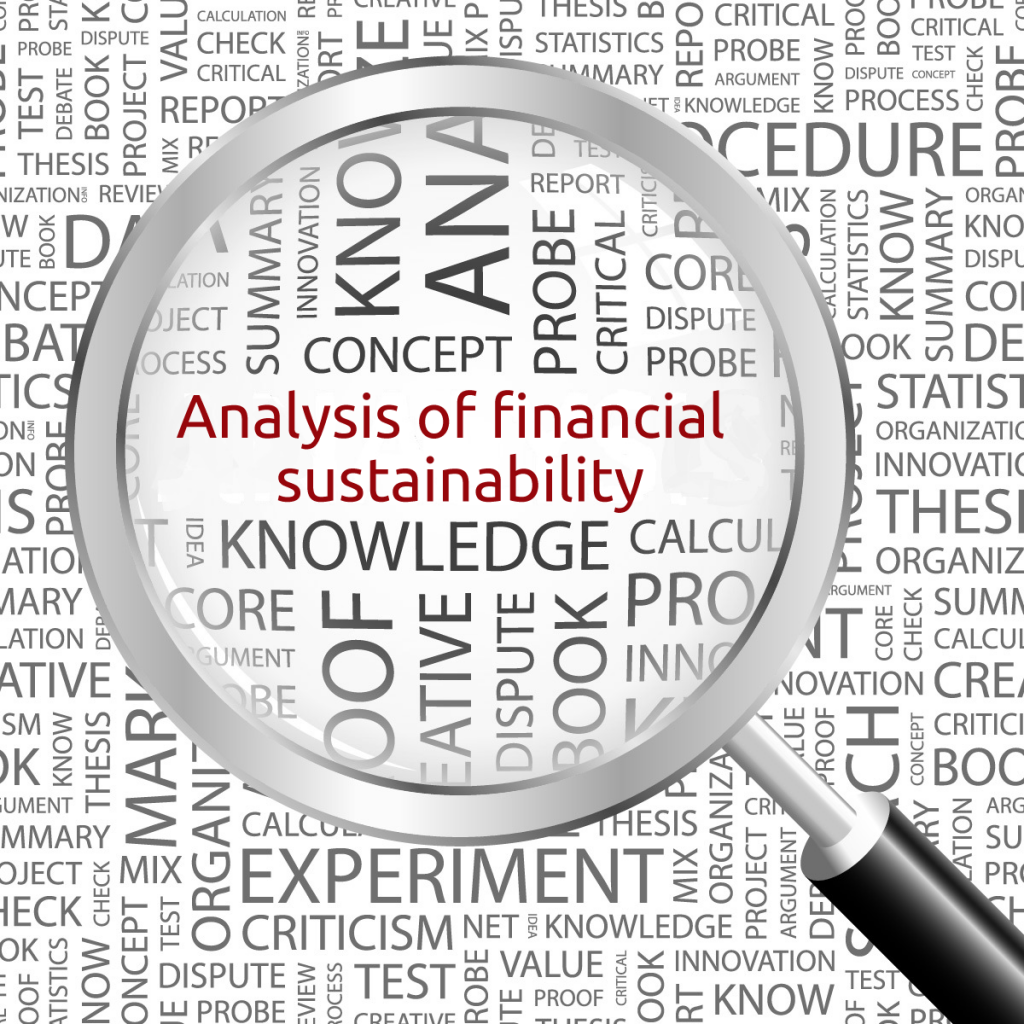 Analysis of financial sustainability